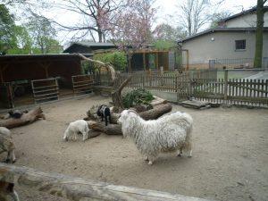 Tierpark_Neukolln_Berlin
