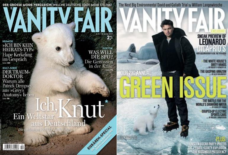 Knut, icebear